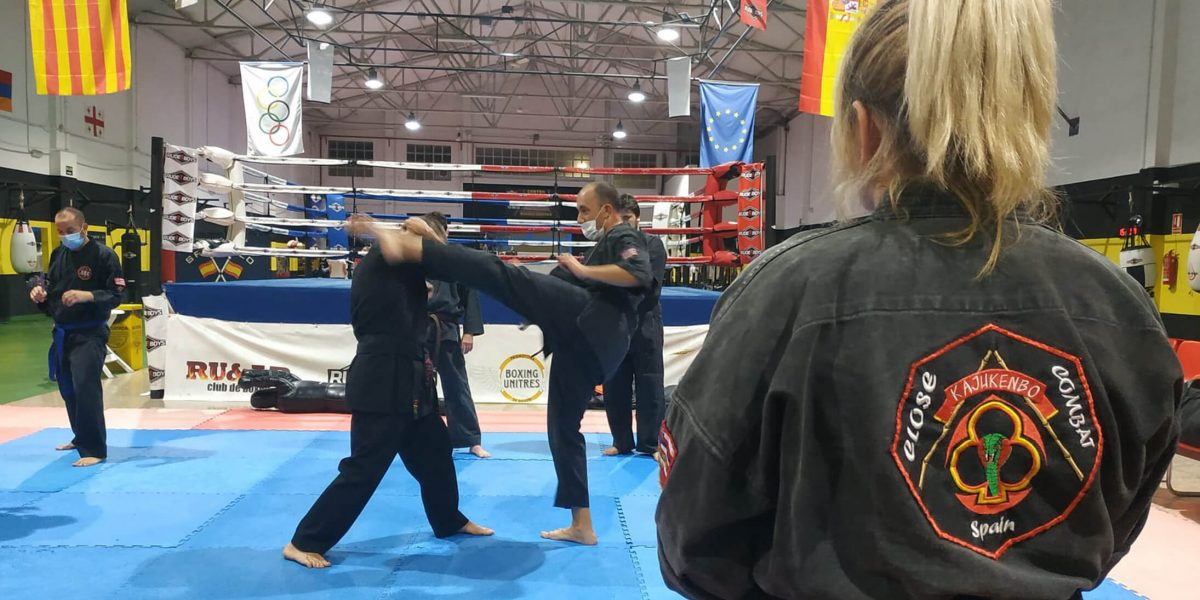 clases de kajukenbo close combat