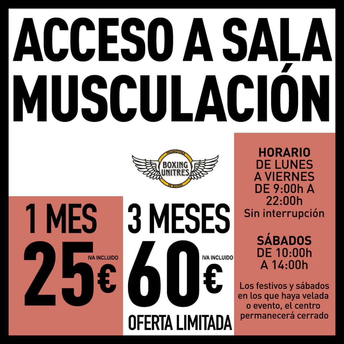 precios de las clases del gimnasio musculación